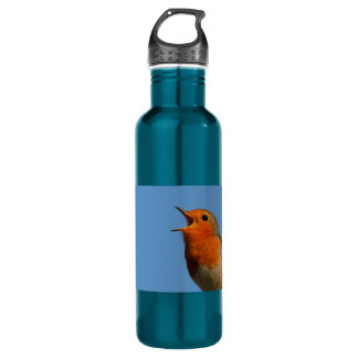 Robin Redbreast Water Bottle