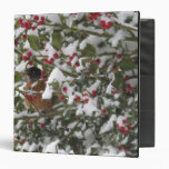 robin sheltering in a holly tree after a snow vinyl binder