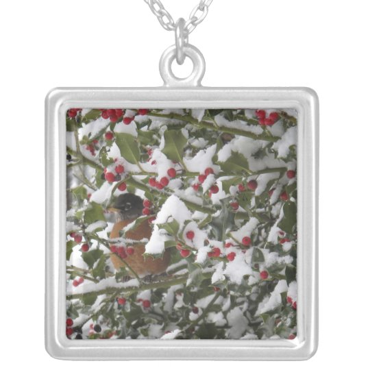 robin sheltering in a holly tree after a snow silver plated necklace