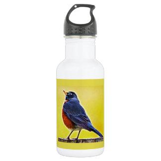 Robin Stainless Steel Water Bottle