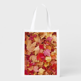 Robin Themed Grocery Bag