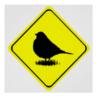 Robin Warning Sign Love Bird Watching