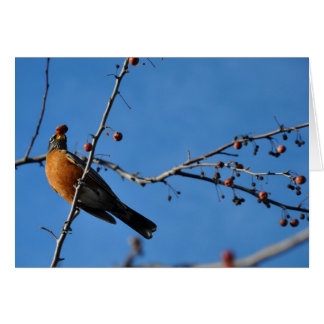 Robin with Berry in Beak - Greeting Card