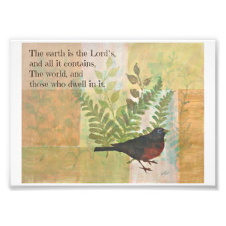 Robin with Bible Verse Photograph