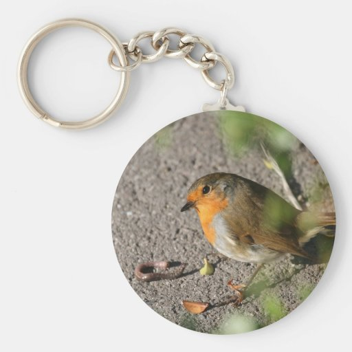 Robin with his worm basic round button keychain
