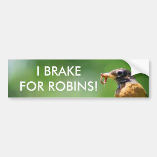 Robin With Worm Bumper Sticker