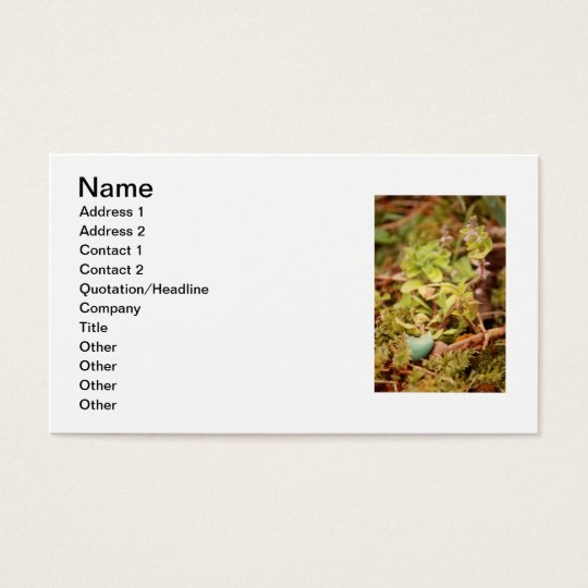 Robin's Egg and Wildflowers Business Card