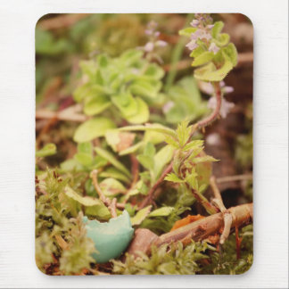 Robin's Egg and Wildflowers Mouse Pad