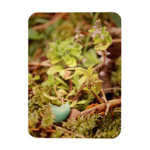 Robin's Egg and Wildflowers Rectangular Photo Magnet