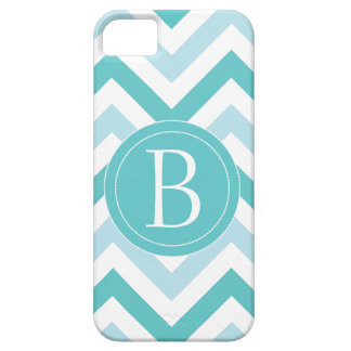 Robin's Egg Blue Chevron Phone Case