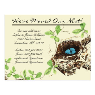 Robins Egg Blue Eggs in Nest  We Have Moved Postcard