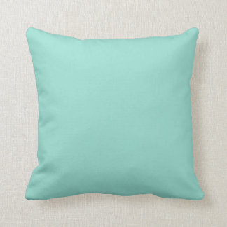 Robin's Egg Blue Throw Pillow