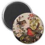 Robins Fridge Magnets
