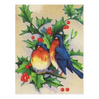 Robins & Holly Christmas Postcard