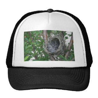 Robins in the Nest Trucker Hat
