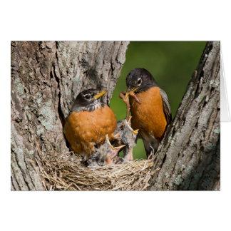 Robins V Greeting Card