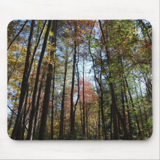 Robinson Woods Mouse Pad