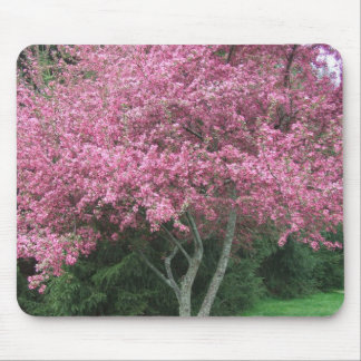 Robinsons Crabapple Pink Flowering Tree Mouse Pad