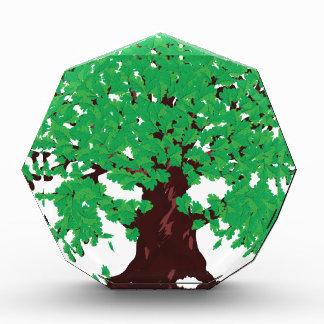 Roble con las hojas verdes