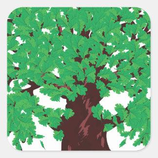 Roble con las hojas verdes pegatina cuadrada