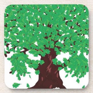 Roble con las hojas verdes posavasos de bebida
