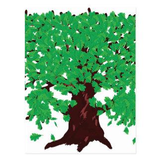Roble con las hojas verdes tarjeta postal