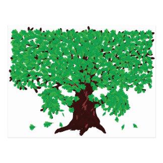 Roble con las hojas verdes tarjetas postales
