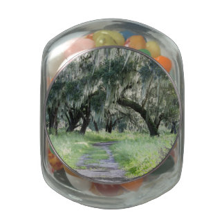 Roble de la Florida Jarras De Cristal
