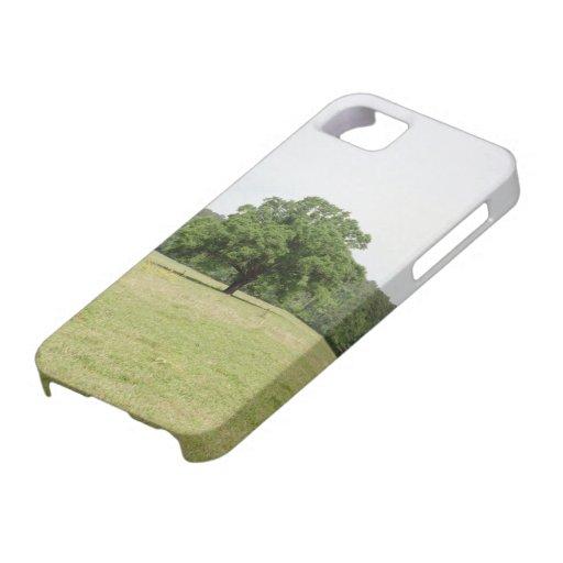 Roble del este de Tejas iPhone 5 Case-Mate Protectores