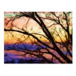 Roble en la puesta del sol postales