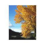 Roble en otoño impresiones en lienzo estiradas