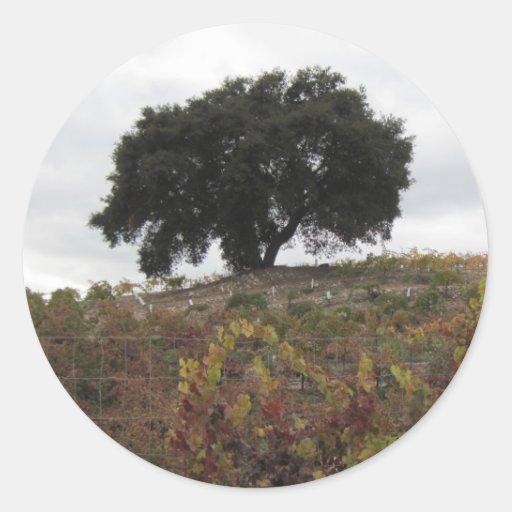 Roble en viñedo del otoño pegatina redonda