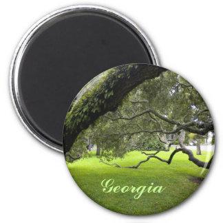 Roble hermoso de Georgia y césped verde Imán Redondo 5 Cm