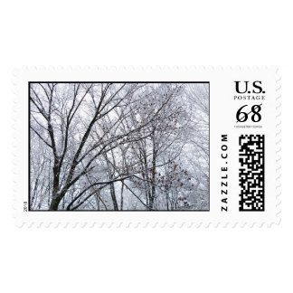Roble nevado - grande timbres postales
