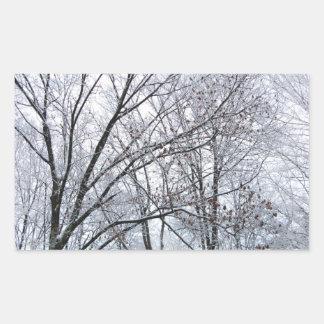 Roble nevado pegatina rectangular