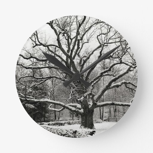 Roble New York City de Bedford del árbol Reloj Redondo Mediano
