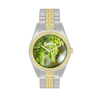 Roble Relojes