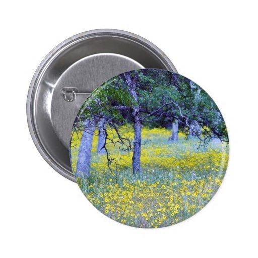 Robles de los bosques de los campos de flores pin