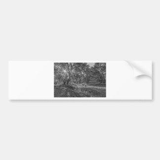Robles de valle de Whitney Pegatina Para Auto