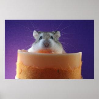 Roborovski Hamster Poster