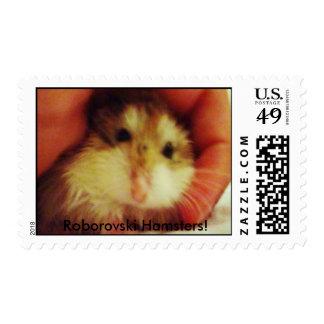 Roborovski Hamster Stamps