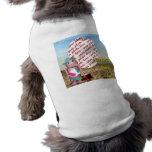 ¡Robox9 olvidó la protección solar! Camisa De Mascota