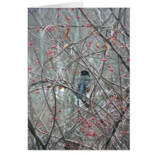Robyn en invierno tarjeta de felicitación