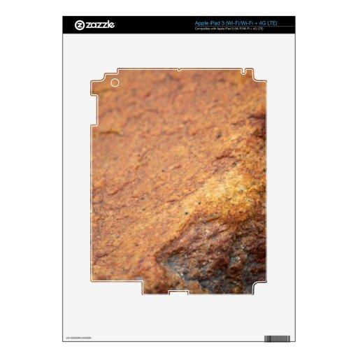 Roca coloreada moho del granito iPad 3 skins