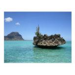 Roca cristalina integrada por coral tarjetas postales