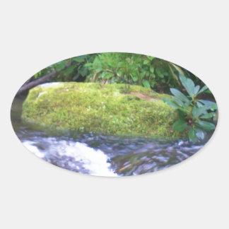 roca cubierta de musgo en corriente de la montaña pegatina ovalada