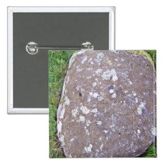Roca cubierta de musgo en un paisaje herboso pin