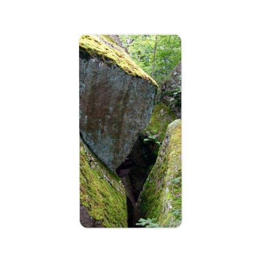 Roca cubierta de musgo etiquetas de dirección