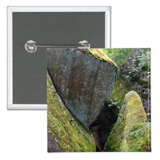 Roca cubierta de musgo pins