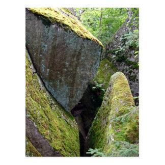Roca cubierta de musgo tarjetas postales